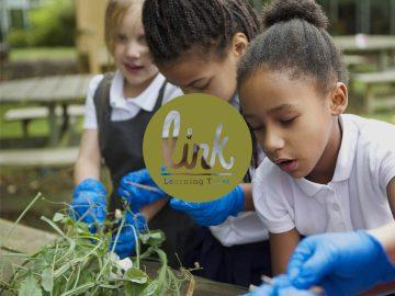 Link Learning Trust logo on primary school children gardening