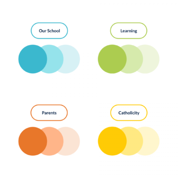 SJV website colour palette