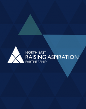 NERAP web design banner